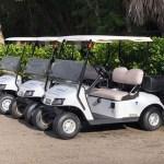 Sodexo Fleet - Reliable Golf Carts Palm Beach County
