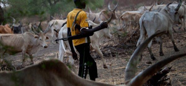 'When will Buhari start talking to herdsmen in language they understand?'