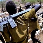 Presidency 'confirms' 2017 report of helicopters supplying arms to herdsmen in Delta