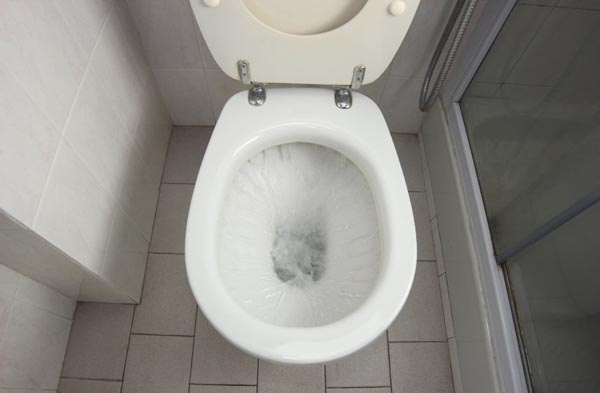 Longmont, CO Toilet plumbing and drain repair in Denver by Relief Home Services