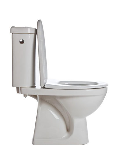 Loveland, CO Toilet Repair and Replacement