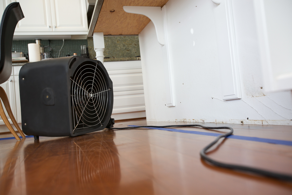 image of a fan drying out a room after water and sewage clean up in loveland, co