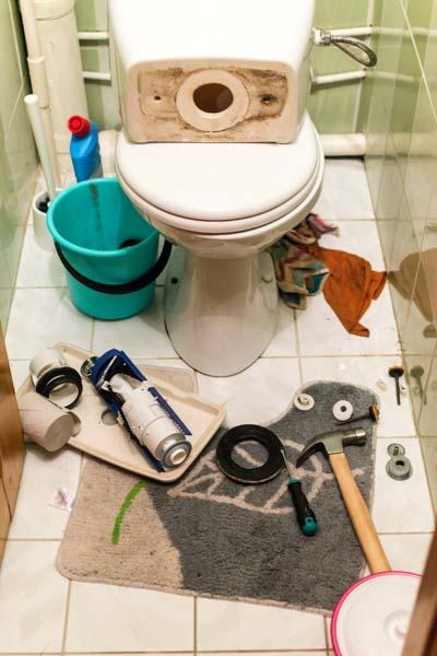 Toilet Repair at Loveland, CO resident's home