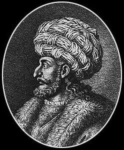 Ac.saladin