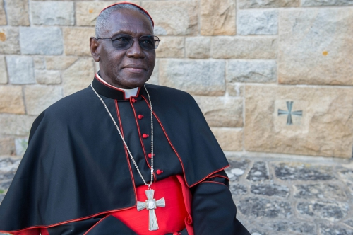 """Résultat de recherche d'images pour """"cardinal sarah"""""""