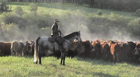 Ron_CattleDrive2003