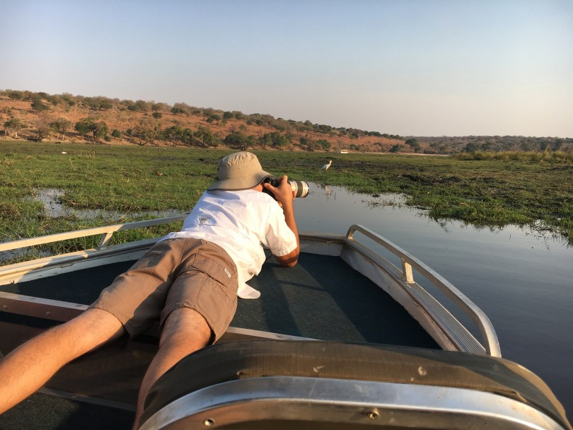 Safari by boat