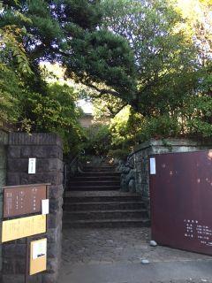 yakumosaryo