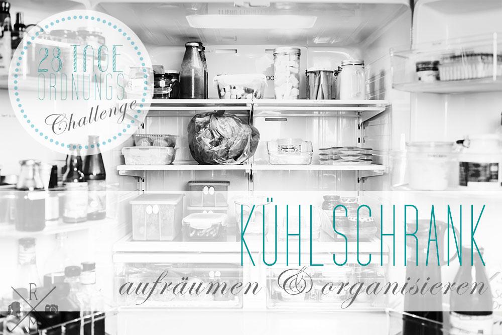 Fruehjahrsputz2015_MehrPlatz_Ausmisten_Logo_Tag8_Kuehlschrank
