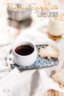 Pumpkin Spice Latte - ein schnelles und fast gesundes Rezept | relleomein.de #pumpkinspicelatte #rezept #youtube #coffeecreamer