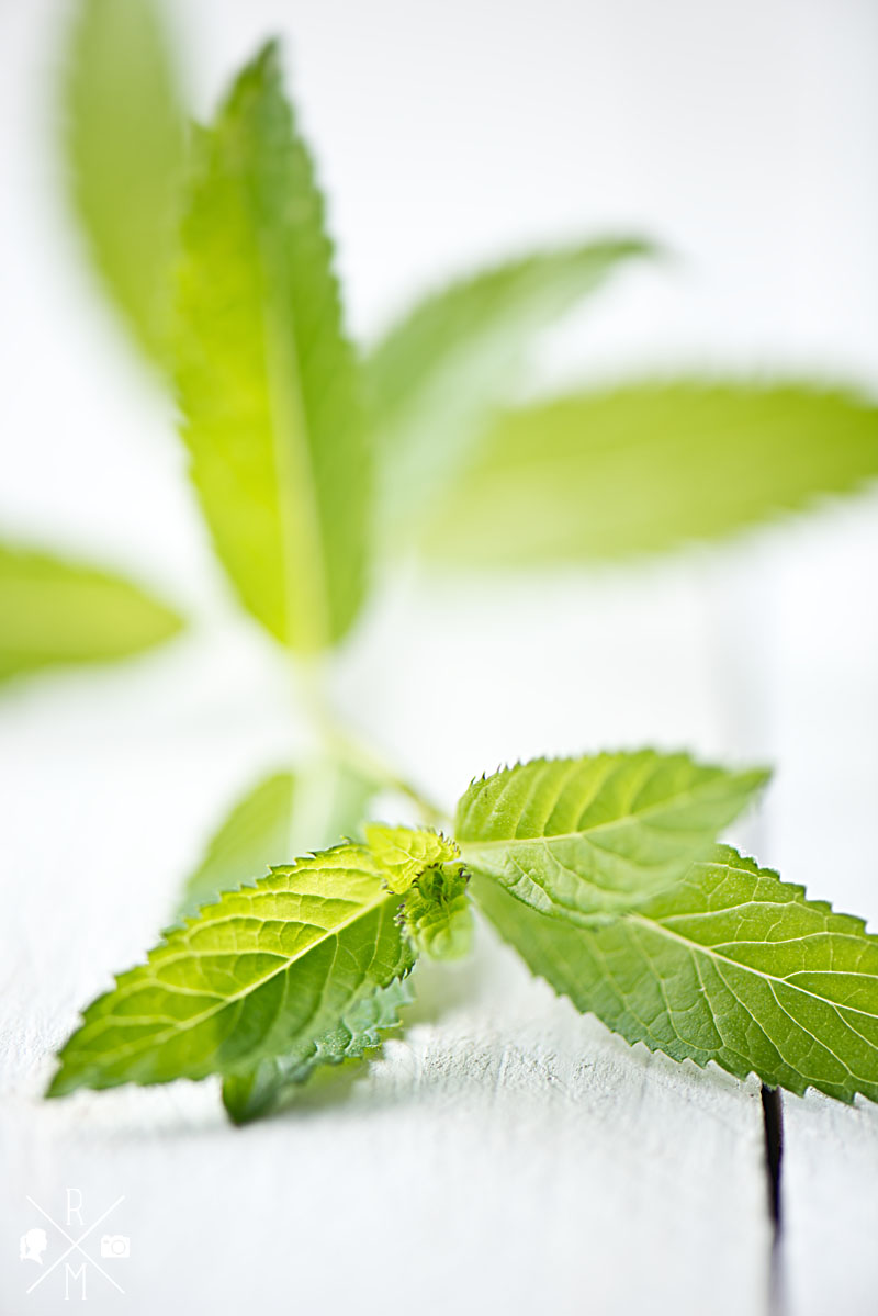 Fresh Mint for stawberry slush | relleomein.de