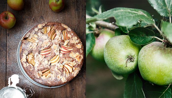 Veganer Apfelkuchen mit Mandeln - Ein einfaches Rühkuchenrezept ohne Eier und ohne Milch | relleomein.de #vegan #thermomix #kuchen