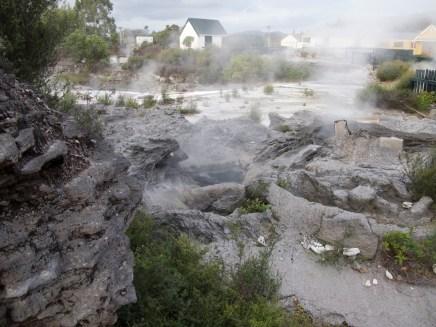 Te Puia - Maori Dorf - heiße Quelle