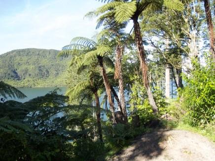 Lake Rotokakahi (The green Lake)