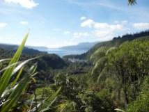 View to Lake Tarawera
