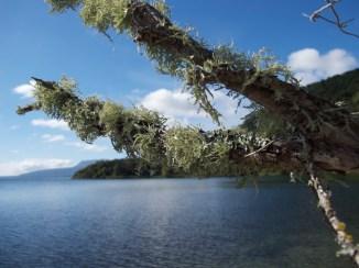 Lake Tarawera a.k.a. The Paradise