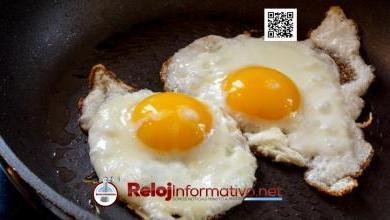 Photo of Grave peligro que corre la industria del huevo