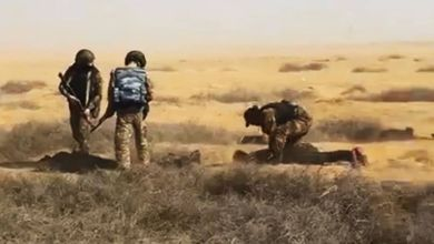 Photo of De película: presos cavan un túnel, huyen de la prisión y pagan a un pastor por ayuda