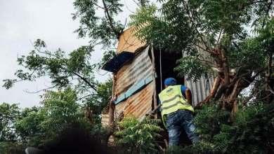 Photo of INVI construirá casa a niño que vive en un árbol