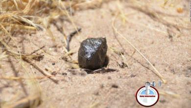 Photo of Estos meteoritos aterrizaron en la Tierra después de un viaje de 22 millones de años