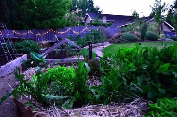 Garden at dusk | reluctantentertainer.com