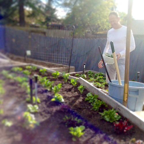 RE Garden Earth Day