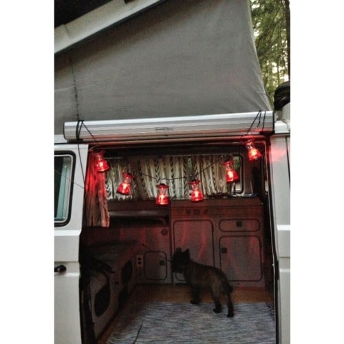 Glamping party lights