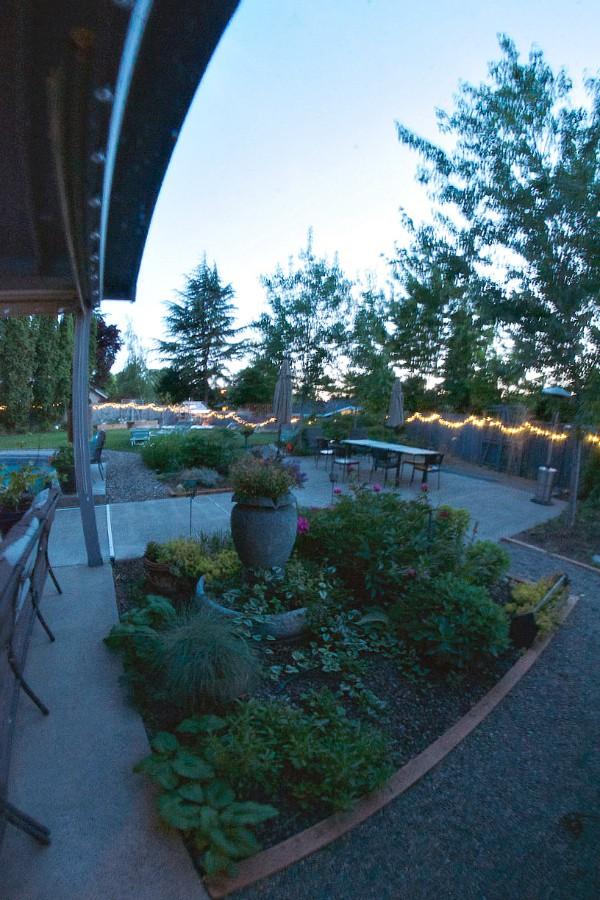 Backyard Novelty Lighting for Outdoor Entertaining