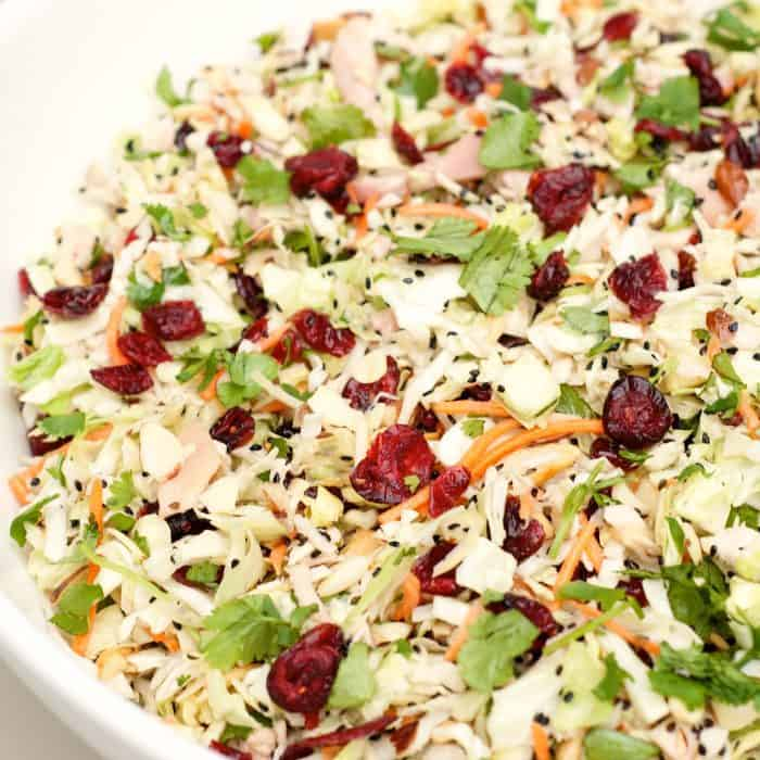 Asian Chicken Salad with cranberries on top