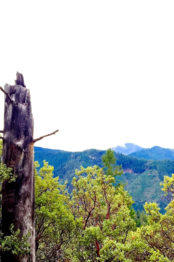 Stein Butte, hiking in southern Oregon