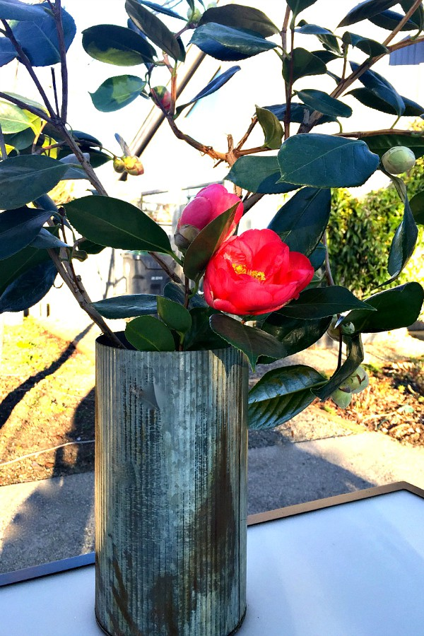 Camellia Table Setting