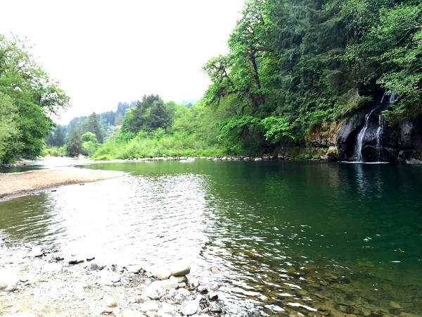 Favorite Camping Spot in Oregon and Red, White, and Blue Apricot Appetizer