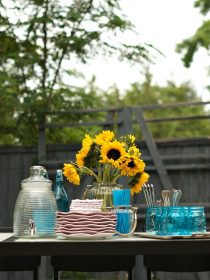 Outdoor Party Ideas and Tips for Bug-Free Entertaining! | ReluctantEntertainer.com