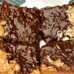 Chocolate Chip Coconut Fudge Brownies