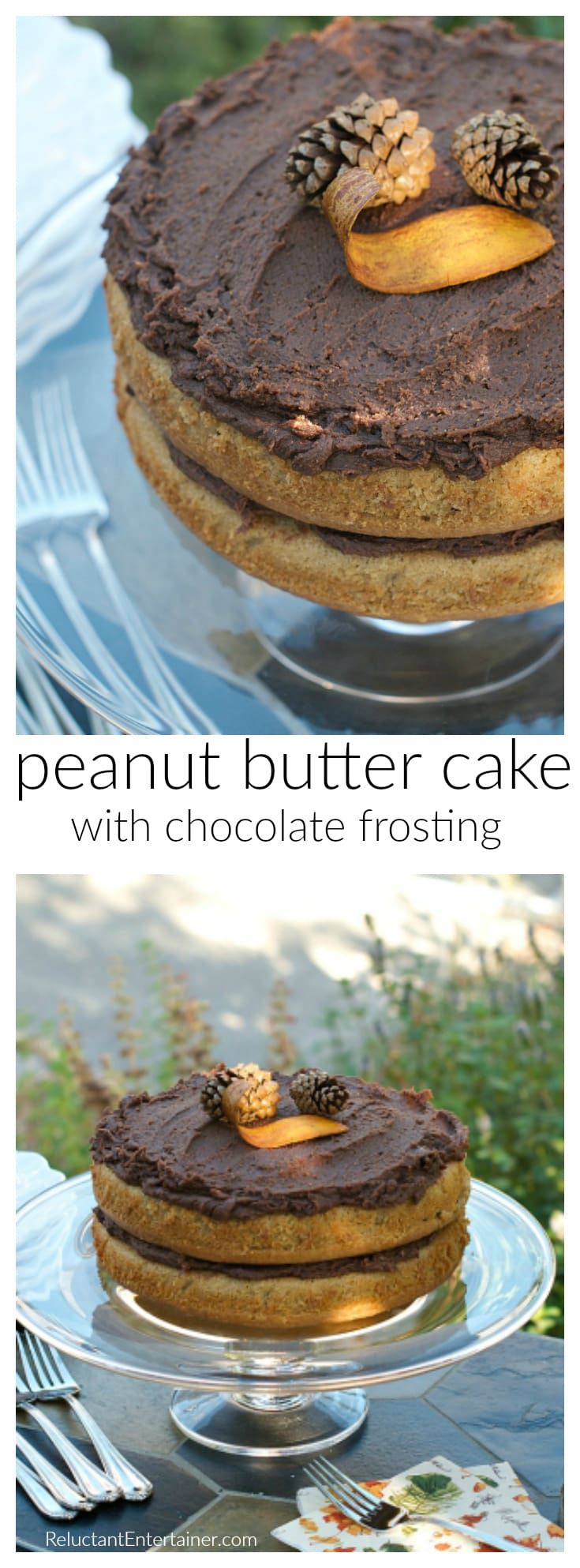 Peanut Butter Cake with Chocolate Frosting at ReluctantEntertainer.com