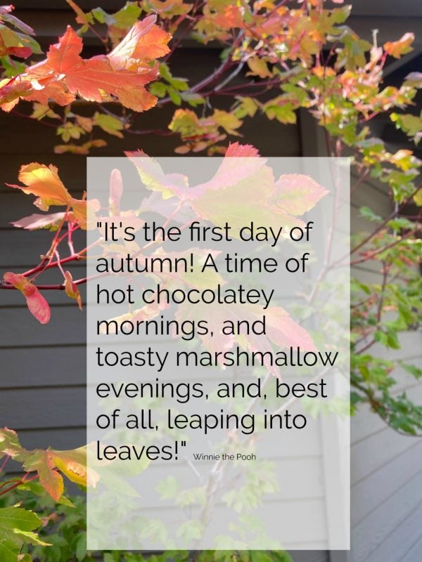 first day of autumn winnie the pooh quote