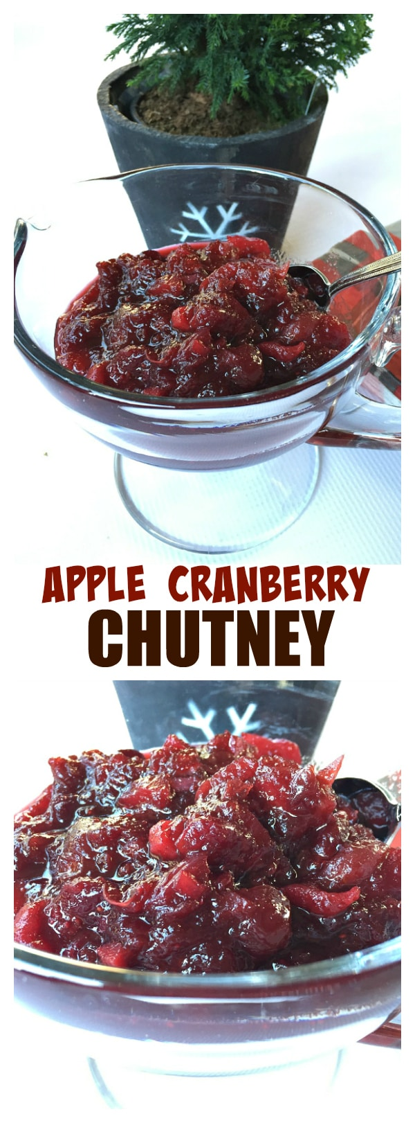 Apple Cranberry Chutney is delicious served with turkey, ham, Cornish game hens, chicken, … or on sandwiches, in wraps, and even baked in a delicious brie!