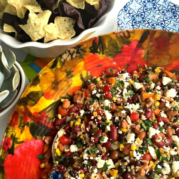 Mexican Bean and Rice Dip