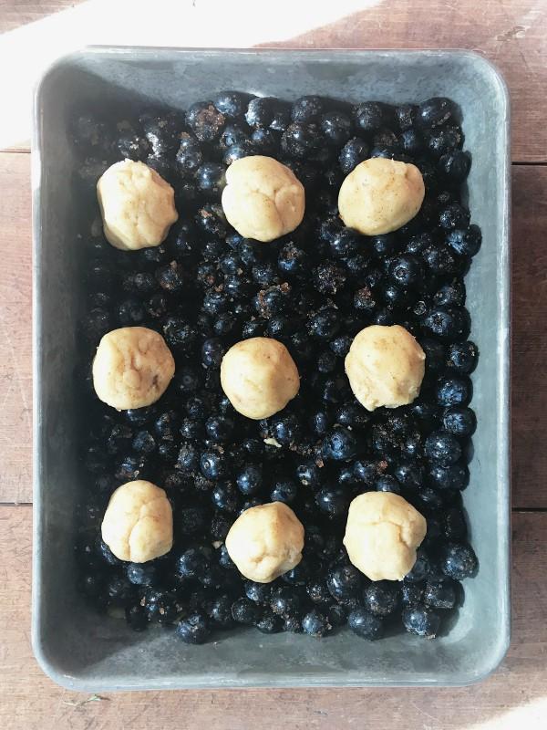 Blueberry Snickerdoodle COOKIE Summer Cobbler