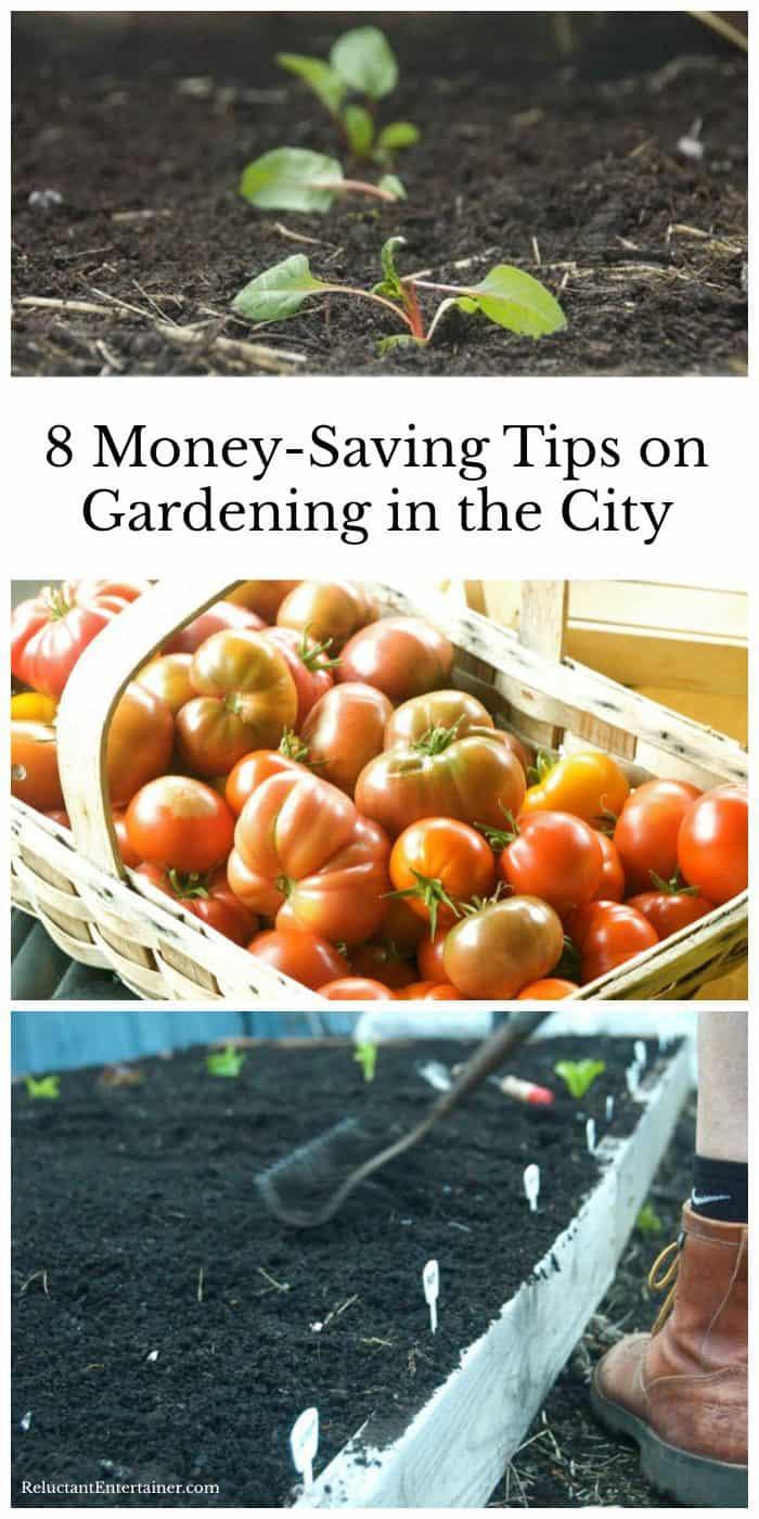Easy TIPS: 8 Money-Saving Tips on Gardening in the City