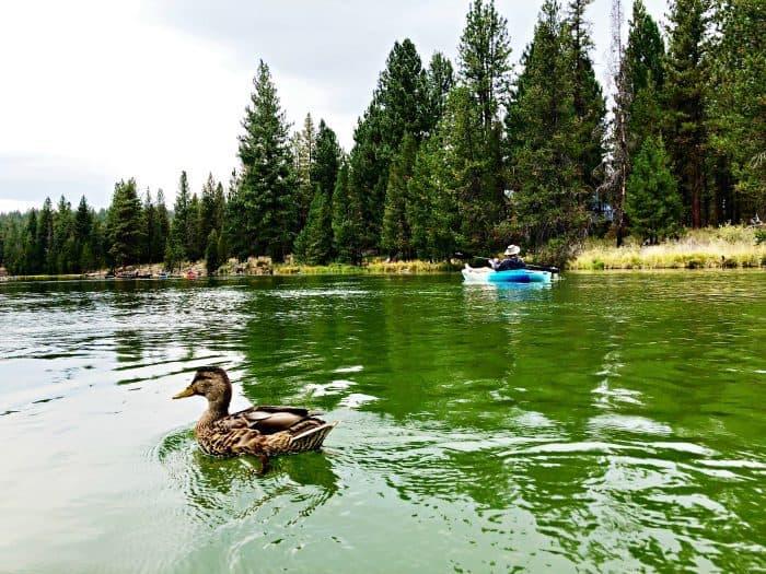 Deschutes River Kayak