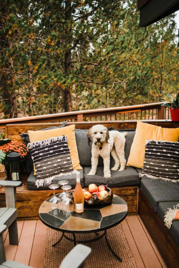 Cozy Outdoor Living Space - Alder the Whoodle