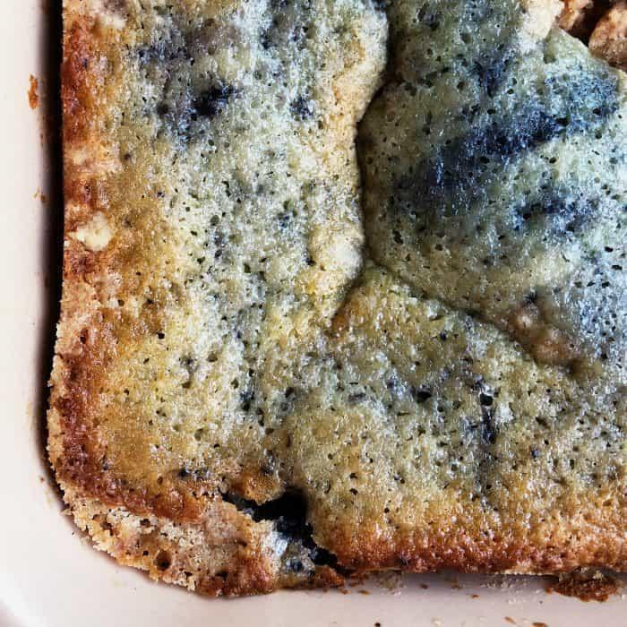 Delicious Newfoundland Blueberry Buckle Recipe