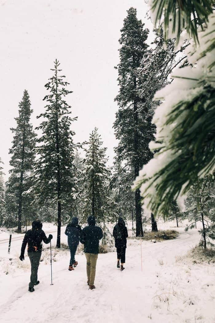 Lamb Meatballs and Coconut Shallot Creamed Kale - walking snow