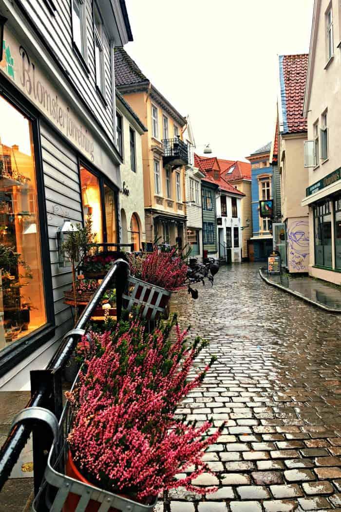 Homelands Viking Cruise Excursions Norway - walking Bergen