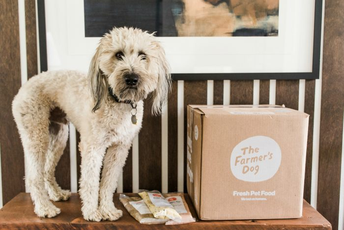 Whoodle pup standing next to a large box of Farmer's Dog Food