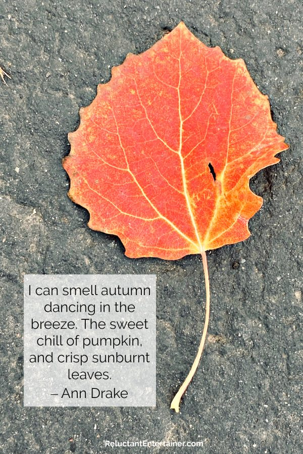 fall leaf with ann drake quote