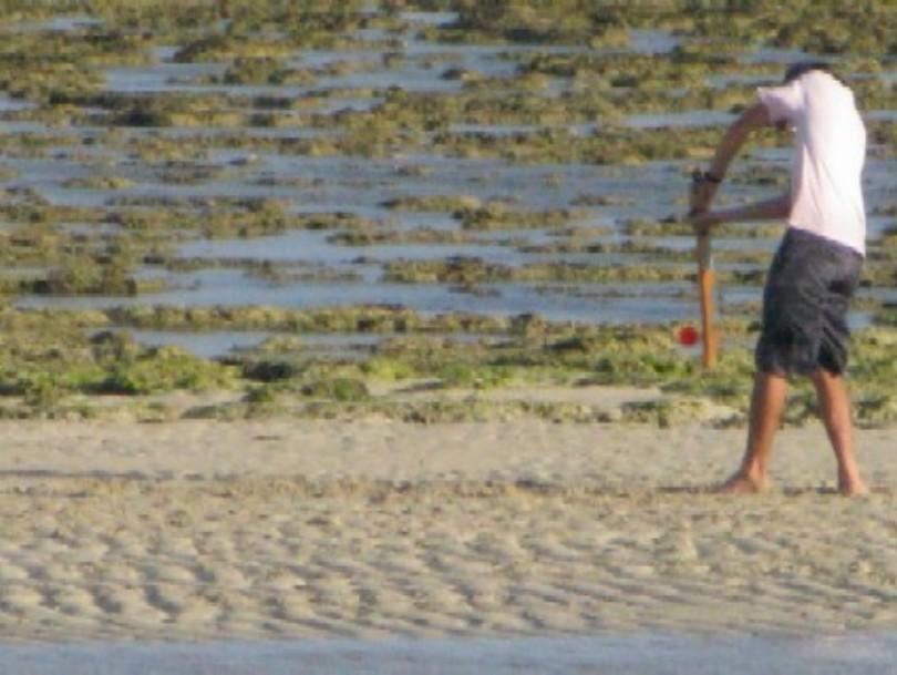cricket-on-the-beach1