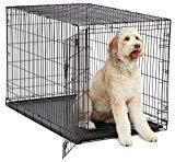 Funda para perro XL | Estuche plegable para perros MidWest con panel de separación, patas protectoras del piso y soporte para perros resistente a fugas | 48L x 30W x 33H pulgadas, perro de raza XL, negro