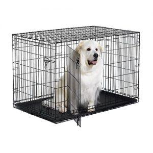 Nueva caja para perros del mundo